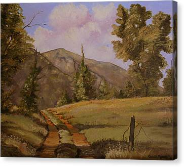 Berkshire Country Road Canvas Print by Susan Moore