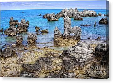 Bermuda Coral Reef Faries Canvas Print by Charline Xia