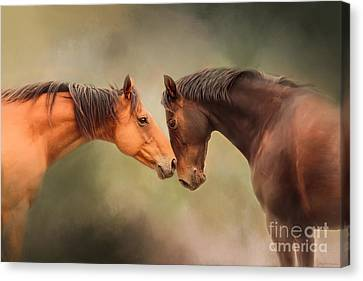 Best Friends - Two Horses Canvas Print by Michelle Wrighton