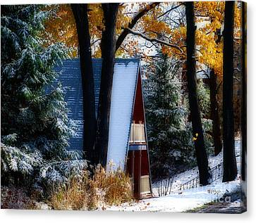 Between Autum And Winter Canvas Print by Lois Bryan