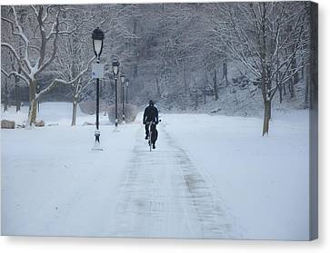 Bicycling In The Snow - Fairmount Park Canvas Print by Bill Cannon