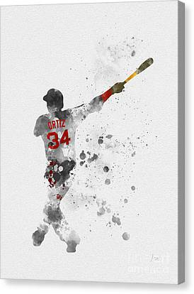 Big Papi Canvas Print by Rebecca Jenkins