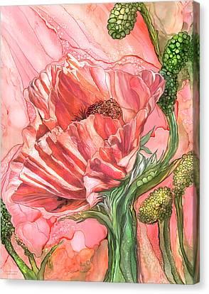 Big Peach Poppy Canvas Print by Carol Cavalaris