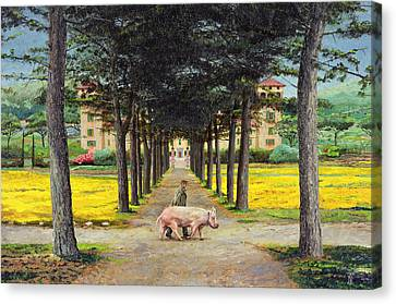 Big Pig - Pistoia -tuscany Canvas Print by Trevor Neal