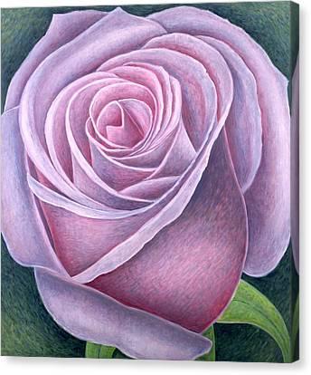 Big Rose Canvas Print by Ruth Addinall