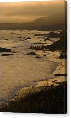 Big Sur Coastline Canvas Print by Don Wolf