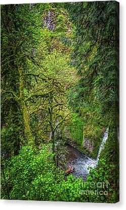 Bigfoot Country Canvas Print by Jon Burch Photography