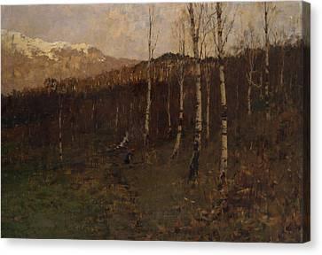 Birch Forest Canvas Print by Bartolomeo Bezzi