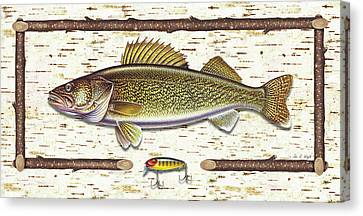 Birch Walleye Canvas Print by JQ Licensing