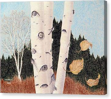 Birches Canvas Print by Betsy Gray Bell