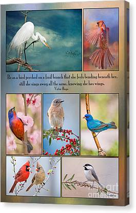 Bird Collage With Motivational Quote Canvas Print by Bonnie Barry