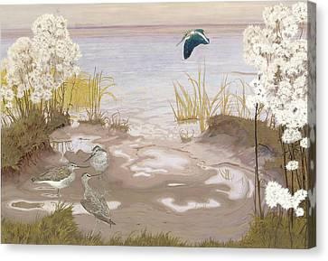 Bird On The Mud Flats Of The Elbe Canvas Print by Friedrich Lissmann