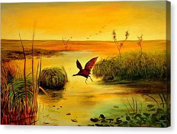 Bird Water Canvas Print by Henryk Gorecki