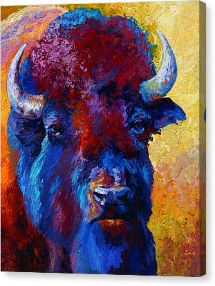 Bison Boss Canvas Print by Marion Rose