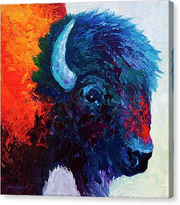 Bison Head Color Study I Canvas Print by Marion Rose