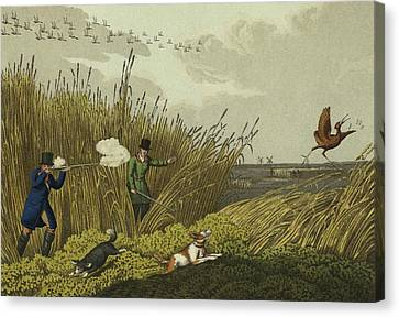 Bittern Shooting Canvas Print by Henry Thomas Alken
