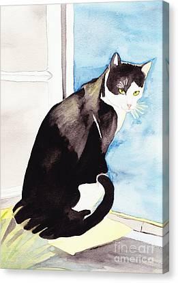 Black And White Cat Canvas Print by Michaela Bautz