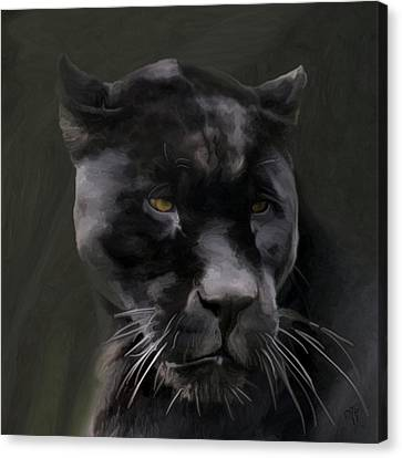 Black Beauty Canvas Print by Vic Weiford