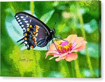 Black Butterfly Canvas Print by Leonardo Digenio