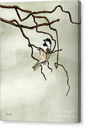 Black Capped Chickadee Canvas Print by Antony Galbraith