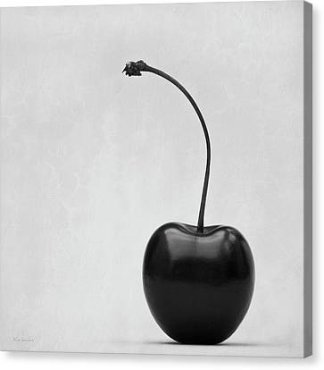 Black Cherry Canvas Print by Wim Lanclus