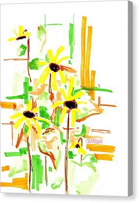 Black Eyed Susans Canvas Print by Teddy Campagna