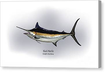 Black Marlin Canvas Print by Ralph Martens