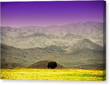 Black Mountains Az Canvas Print by Susanne Van Hulst