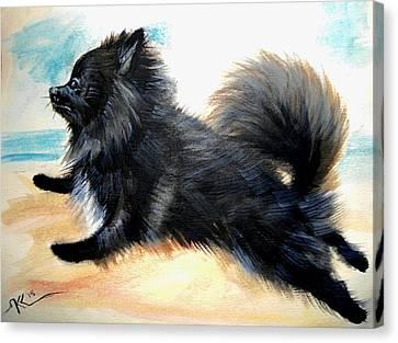 Black Pomeranian Dog 4 Canvas Print by Katerina Kovatcheva