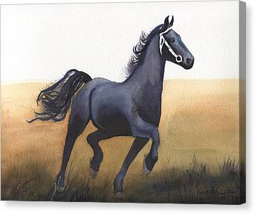 Black Stallion Canvas Print by Kathy Nesseth