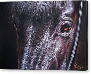 Black Stallion Canvas Print by Elena Kolotusha