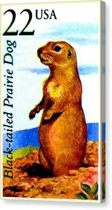 Black-tailed Prairie Dog Canvas Print by Lanjee Chee