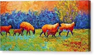 Blackberries And Sheep II Canvas Print by Marion Rose
