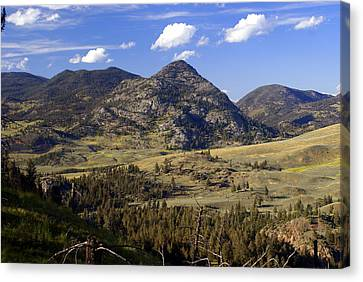 Blacktail Road Landscape 2 Canvas Print by Marty Koch