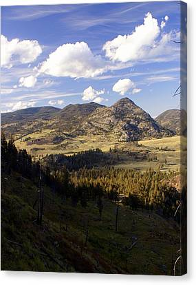 Blacktail Road Landscape Canvas Print by Marty Koch