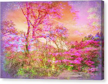 Bliss Of Silence 2 Canvas Print by Francine Collier