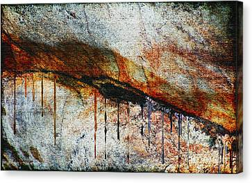 Blood From A Stone Canvas Print by RC deWinter