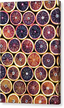 Blood Oranges Pattern Canvas Print by Tim Gainey
