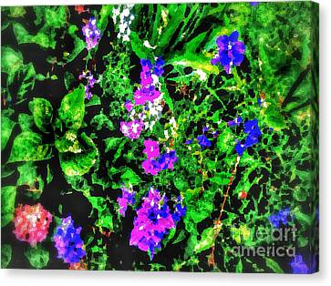 Blooming Piece Of Land- Oil,  Canvas Print by Olga Lyakh