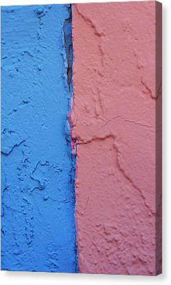 Blue And Pink Matter Canvas Print by Toni Hopper