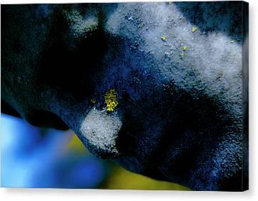 Blue Angel Face I Canvas Print by Grebo Gray