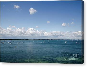 Blue Bay Seascape From The Isle Of Purbeck Dorset England Uk Canvas Print by Andy Smy