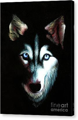 Blue Eyed Husky Canvas Print by Kristian Leov