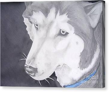 Blue Eyes Canvas Print by Sarah Quezada