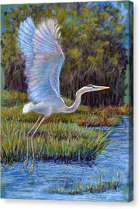Blue Heron In Flight Canvas Print by Susan Jenkins