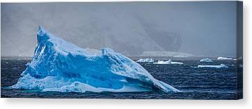 Blue Iceberg - Antarctica Iceberg Photograph Canvas Print by Duane Miller