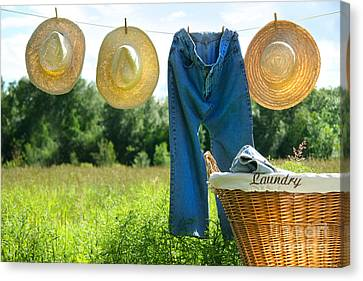 Blue Jeans And Straw Hats On Clothesline Canvas Print by Sandra Cunningham
