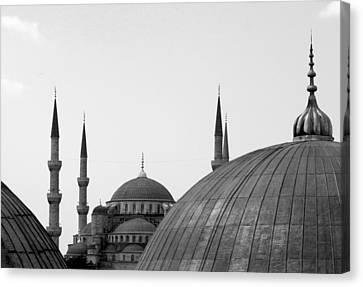Blue Mosque, Istanbul Canvas Print by Dave Lansley