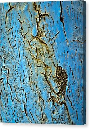 Blue  Paint Scratched The Iron Canvas Print by Jozef Jankola