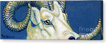 Blue Ram Canvas Print by Pat Burns